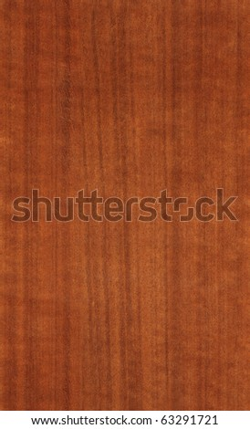 nutwood texture - stock photo