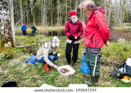 NYBRO, SWEDEN - APRIL 23, 2014: Freshwater excursion. Group of people examining result from collected specimens.