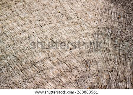 Nypa palm leaf roof - stock photo