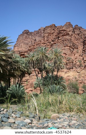 Oaisis in Aldissah Saudi Arabia - stock photo