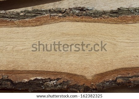 Oak board with bark. - stock photo