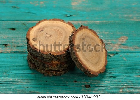 Oak split with growth rings and bark on turqoise background - stock photo