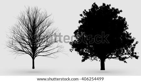 oak tree silhouettes - stock photo