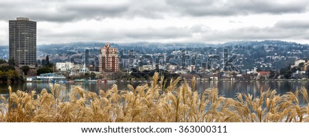Oakland, CA view across Lake Merritt and hills, with selective focus on golden dried plants in the foreground. - stock photo