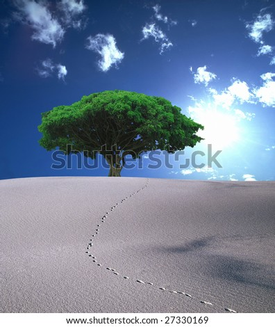 Oasis in Desert - stock photo