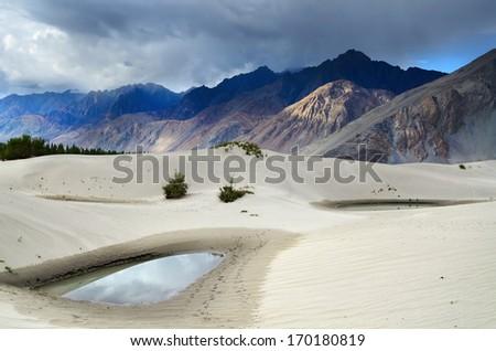 Oasis in desert in Nubra valley in Ladakh, India - stock photo