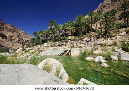 Oasis in the Oman Desert - stock photo