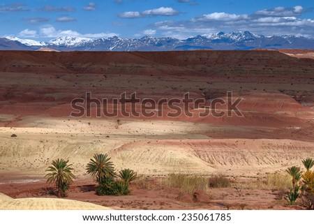Oasis in the Sahara desert in Morocco  - stock photo