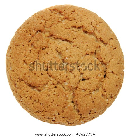 Oatmeal cookies on the white background - stock photo