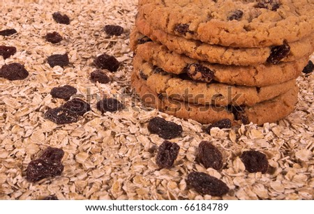 Oatmeal rasin cookies on oats and surrounded by raisins.