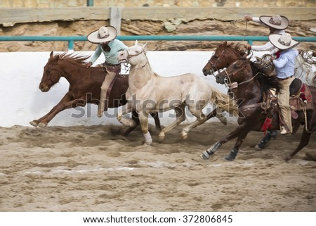 "OAXACA, MEXICO. DECEMBER 20, 2015. A man is jumping from a tamed horse to a wild horse while they are running, this is called ""el paso de la muerte"". As part of Charreria Mexican National Sport"