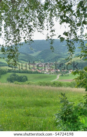 Oberried village, Black Forest, Germany - stock photo