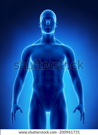 Obesity concept  standard weight - stock photo