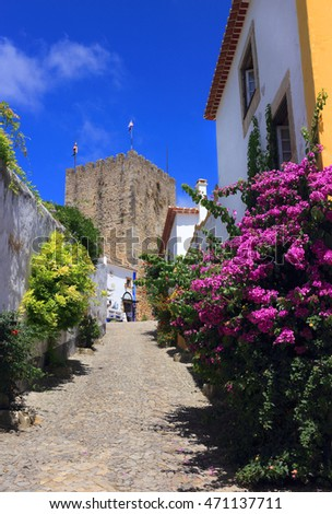 Obidos, Portugal. Narrow cobbled street in the picturesque medieval town's historic centre. Built within defensive walls, the town is an excellent example of conservation and sustainable tourism.