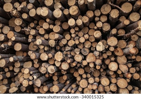 Object. logs, felled trees stacked in a woodpile. Bars appear with the prospect of a wooden picture. Russia. Tver - stock photo