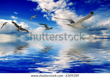 Ocean and birds (illustrated) - stock photo