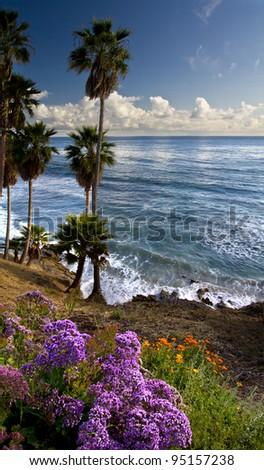 Ocean and coastal landscapes, Laguna Beach - stock photo