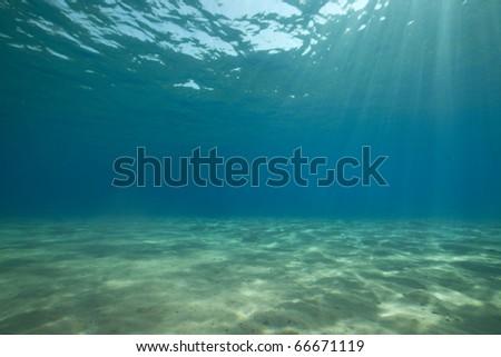 ocean and sun. - stock photo