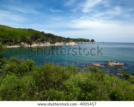 ocean bay with pines and blue sky