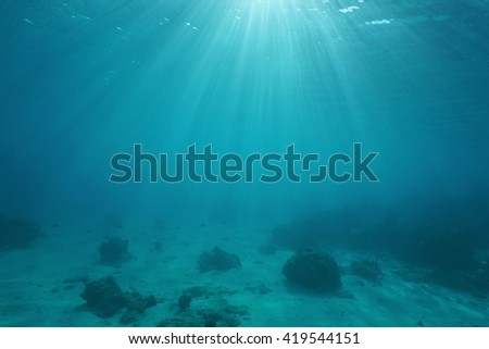 Ocean floor with sunlight through water surface, natural scene underwater, Pacific ocean, French Polynesia - stock photo