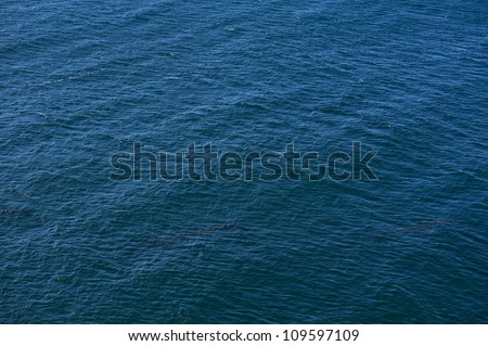 Ocean Surface Background - Dark Blue Ocean Surface. Nature Photo Backgrounds Collection. - stock photo