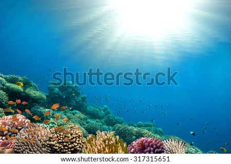 Ocean Underwater Background Image - stock photo