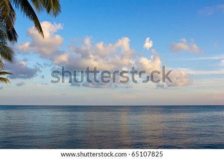 ocean with clouds and palms in Florida Keys - stock photo