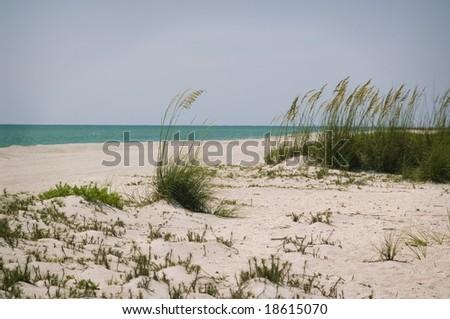 Oceanic Scene - stock photo