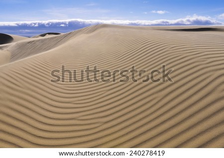 Oceano Dunes Natural Preserve, California (USA) - stock photo
