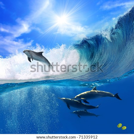 Oceanview with sunlight. A flock of playful dolphins swimming underwater and one of them leaping out from big sea surfing wave - stock photo