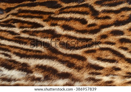 ocelot fur background