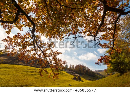 October autumn scenery in remote rural area in Transylvania