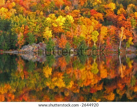 October morning at the George Lake - stock photo