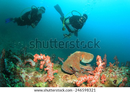 Octopus and couple scuba diving