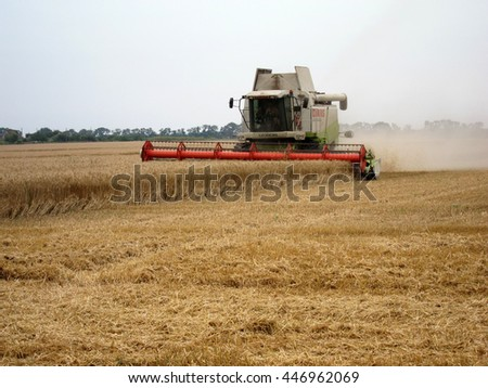 ODESSA REGION, UKRAINE - June 24, 2016: Harvesting of barley. A combine harvests barley in the field
