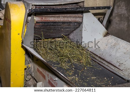 Odessa, Ukraine - October 10, 2014: Technological production process of grinding wheat on a small farm automatic modern mills. Private agriculture October 10, 2014 in Odessa, Ukraine.
