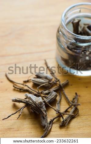 Oenothera roots - stock photo