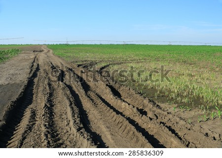 Off-road track in country farm. - stock photo