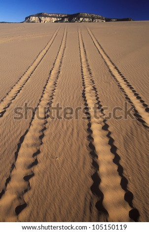 Off Road Vehicle Tracks in Sand, Coral Pink Sand Dunes State Park, Utah - stock photo