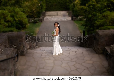 Off To The Wedding - stock photo