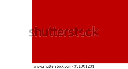 Official Large Flat Flag of Dubai Horizontal