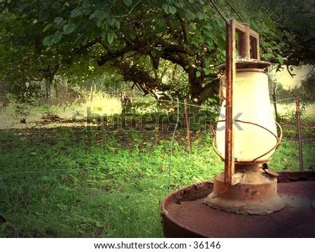 oil lantern sitting on drum under mulberry tree - stock photo