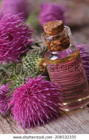 Oil of burdock macro for the table in a glass bottle vertical  - stock photo