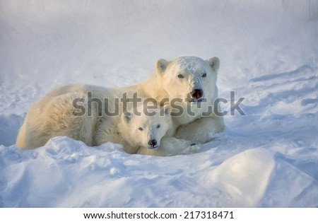Oil painting of polar bear and cub lying on Arctic tundra - stock photo