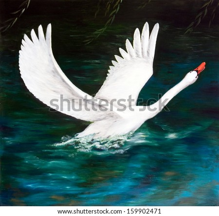 Oil painting. The white Swan on the dark water - stock photo