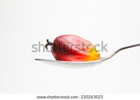 Oil palm fruit on spoon - stock photo