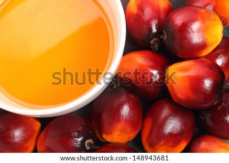 Oil palm fruits and bowl of cooking oil on black background - stock photo