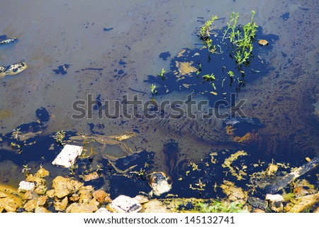 Oil pollution
