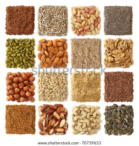 Oil seeds and nuts collection - stock photo