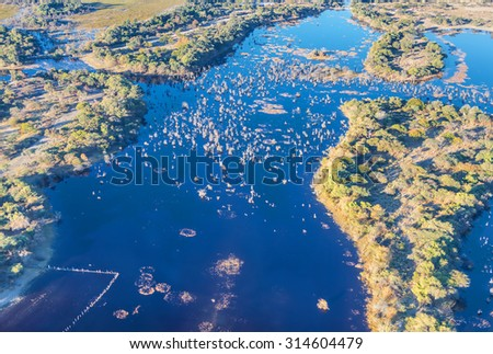 Okavango delta (Okavango Grassland) is one of the Seven Natural Wonders of Africa (view from the airplane) - Botswana - stock photo